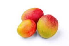 Mango Royalty-vrije Stock Foto