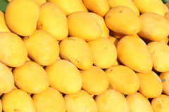 Mango. The background of ripe mangoes royalty free stock photos