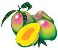 mango Arkivbilder