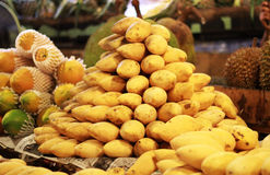 Mango. A lot of yellow nice fruit Royalty Free Stock Images