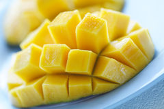 mango Royaltyfria Bilder