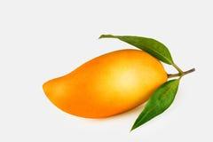 Mango Stockbild