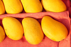 Mango. The close-up of ripe mangoes stock photography