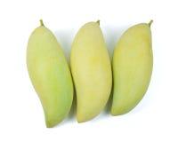 Mango Immagine Stock
