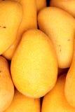 Mango Stock Afbeeldingen