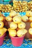 Mango Fotografia Stock Libera da Diritti
