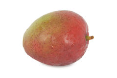 Mango. A mango on a white background Royalty Free Stock Image