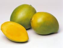 mango Obrazy Stock