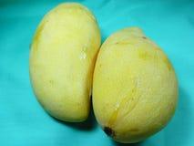 mango Imagens de Stock