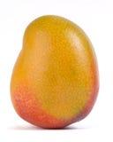 Mango. A mature and juicy mango Stock Photography