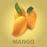 mango imagem de stock royalty free