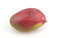 mango Royaltyfri Bild