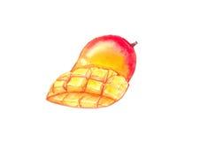 mango Imágenes de archivo libres de regalías