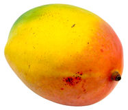 Mango. One mango isolated and with clipping path Stock Photography