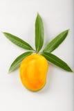 Mango affettato di Alphonso di vista superiore Immagine Stock
