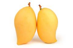 Mango amarillo Foto de archivo libre de regalías