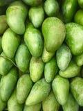 Mango aufgestellt für Verkauf Bilder von den grünen Früchten benutzt als Hintergrund Wiederholungs-Muster grafische Wiederholung  stockfotografie