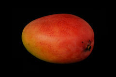 Mango av röd färg på en svart bakgrund Arkivfoto