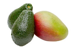 Mango and avocado Stock Image