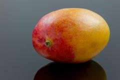 Mango on back Stock Image