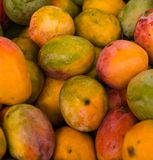 Mango background . Fresh natural mango to background royalty free stock photo