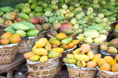 Mango background Stock Photography