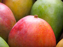 Mango background Royalty Free Stock Images