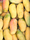 Mango background. Royalty Free Stock Photos