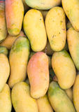 Mango background. Stock Photo
