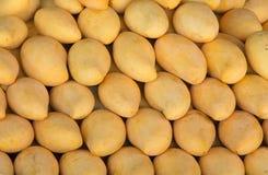 Mango background Stock Images
