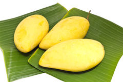 Mango on banana leaf Royalty Free Stock Image