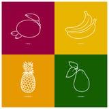 Mango,Banana,Pineapple,Avocado Royalty Free Stock Images