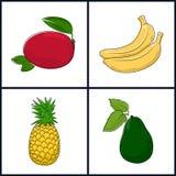 Mango, Banana,Pineapple,Avocado Royalty Free Stock Images