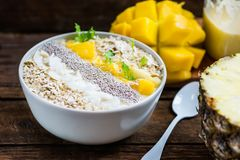 Mango, Banana, Pineapple and Oatmeal Smoothie in the Bowl. With Ingredients on top, on the dark wooden background Royalty Free Stock Photos