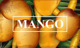 Free Mango Banner Background. Bunch Of Fresh Sweet Fruits 3d Detailed Illustrations Stock Photos - 118409143