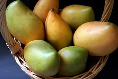 Mango basket. Fresh mangoes in a basket stock photography