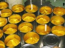 Mango-bearbeta fabriken Arkivbilder