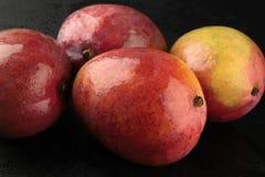 Mango on black background Royalty Free Stock Image