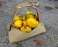 Mango a chupar in a plant made basket royalty free stock images