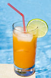 Mango Cocktail by the Pool Royalty Free Stock Images