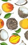 Mango, coconut - colorful seamless pattern vector illustration