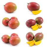 Mango collection Royalty Free Stock Photos
