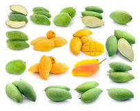 Mango collection isolated on a white Stock Photo