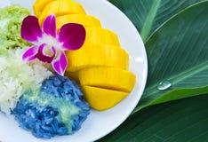 Mango con arroz pegajoso Imágenes de archivo libres de regalías