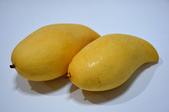 Mango cooked with water flower. Ripe mango with bright yellow flowers Stock Images