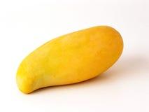 Mango_CRW_5544 Stock Image