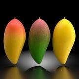 Mango. Stock Photos