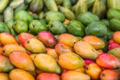 Mango de la exhibición Fotografía de archivo libre de regalías