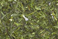 Mango del azul del té verde Fotos de archivo