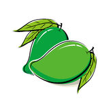 Mango design Stock Image
